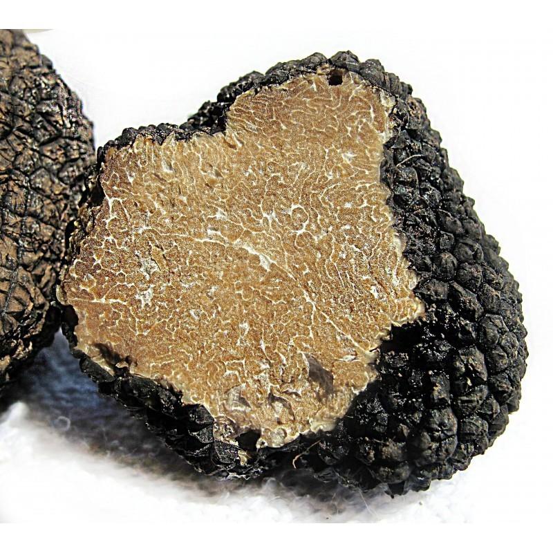 Fresh Black Summer Truffle (Scorzone) - Tuber Aestivum Vitt.